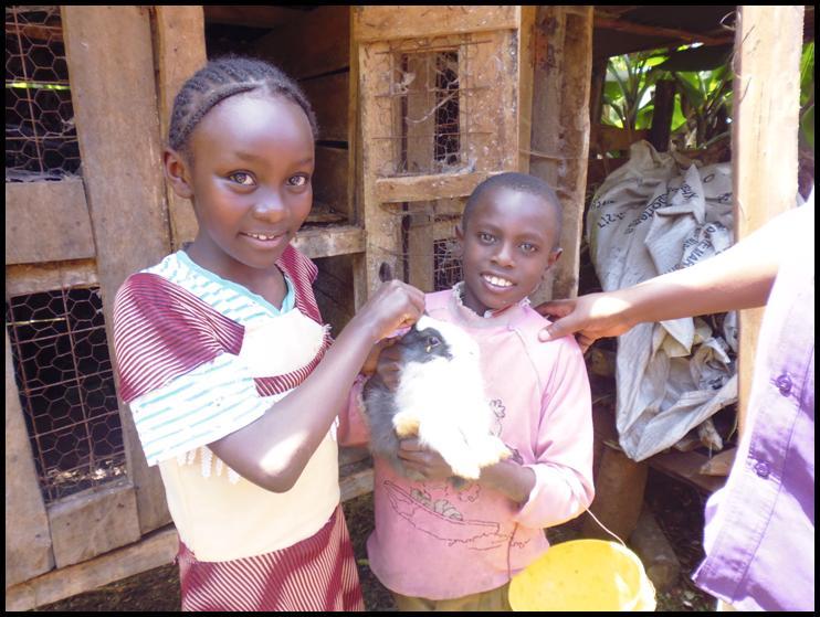 Children participate in an Umoja food project breeding rabbits in Kenya